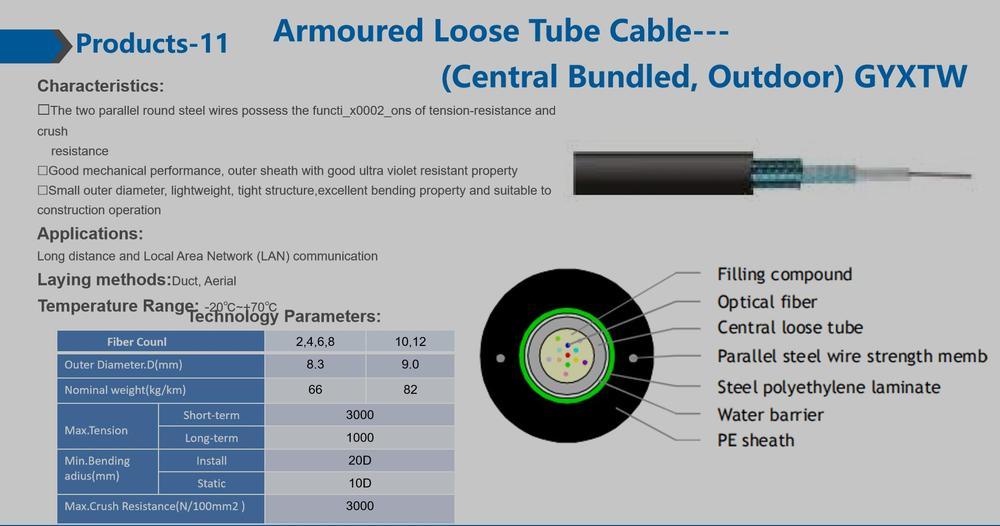 Armoured Loose Tube Cable (Central Bundled, Outdoor) GYXTW.jpg